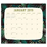 Orange Circle Studio 2019 Magnetic Monthly Calendar Pad, August 2018 - December 2019, Botanicals