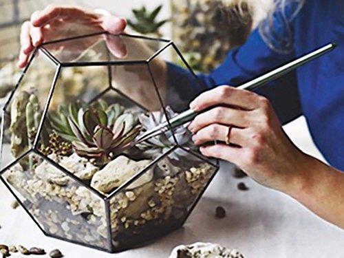 Large Geometric Glass Terrarium Container, Christmas Centerpiece, Succulent Planter, Wedding Centerpiece, Moss Terrarium, Dodecahedron, Stained Glass Planter by Waen by Waen