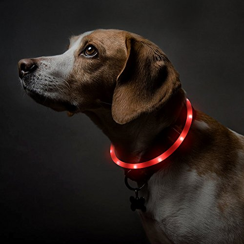 BSEEN LED Dog Collar, USB Rechargeable Light Up Pet Safety Collar with 3 Glowing Modes, Flexible Silicone Dog Collar Great for Small Medium Large Dogs (Red)