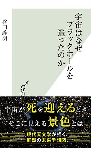 宇宙はなぜブラックホールを造ったのか (光文社新書)