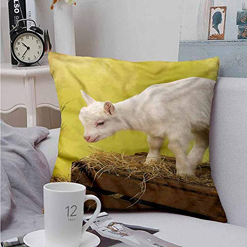 Fbdace Square Lumbar Cushion Cover Goat Baby Animal with Hay Crate Premium,Ultra Soft,Hypoallergenic,Breathable 18 X 18 Inch