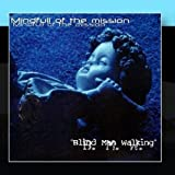 Mindfull Of The Mission by Blind Man Walking (2011-01-12)