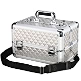 13.8'' Aluminum Professional Makeup Train Case Makeup Organizer with Adjustable Dividers -Cosmetic Box for Travel Makeup Storage,4 Trays and 2 Locks Makeup Box Designed To Fit All Cosmetics Silver