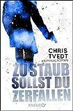 Zu Staub sollst du zerfallen: Kriminalroman (Ein Fall für Edvard Matre)