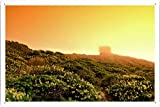 Planet Scene Poster - Point Reyes In The Fog Tin Sign (8
