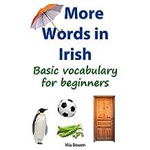 More Words in Irish: Basic vocabulary for beginners (Learn Irish Book 2) (Irish Edition)