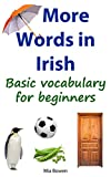 More Words in Irish%3A Basic vocabulary