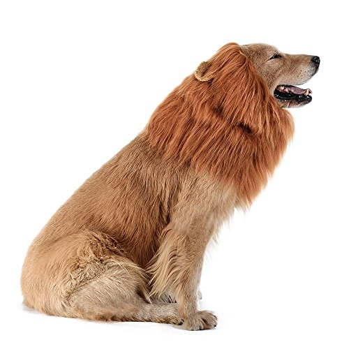Great Dane Halloween Costumes (Iccker Halloween Dog Costume Lion Mane - Hilarious Dog-in-lion ROFL Christmas Gift for Birthday Party, (Brown))
