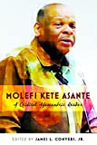 Molefi Kete Asante: A Critical Afrocentric Reader (Black Studies and Critical Thinking)