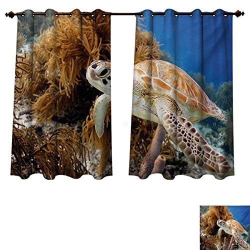 RuppertTextile Turtle Blackout Thermal Curtain Panel Coral Reef and Sea Turtle Close Up Photo Bonaire Island Waters Maritime Window Curtain Fabric Pale Coffee Brown Blue W52 x L63 inch