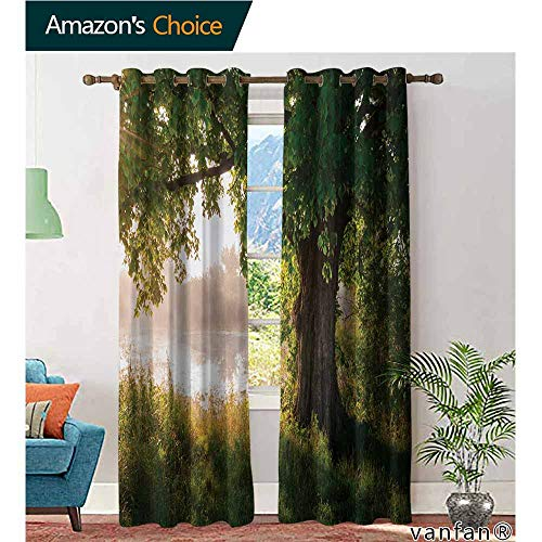 (100% Blackout and Energy Saving,TreeAncient Tree Leafage in Mystical Landscape Foggy Scenery and Stream View Print,for Bedroom/Living Room/Sliding Door/Patio Door,Green Dust Brown,W96
