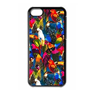 Feather DIY Phone Case for iPhone 5C LMc-80881 at LaiMc