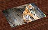 Ambesonne Zoo Place Mats Set of 4, Bengal Tiger Feline Predator Aggressive Hunter Carnivore Africa Safari, Washable Fabric Placemats for Dining Room Kitchen Table Decor, Pale Brown Black White