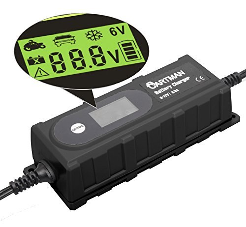 Cartman Automatic Battery Car Charger 3.8A Maintainer for 100Ah Lead-acid Battery, All...