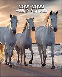 Horse Calendar 2022.Amazon Com 2021 2022 Weekly Planner Wild Horses Running Two Year Calendar Agenda Organizer 24 Months Weekly Planner With Vision Boards Notes To Do S White Stallions Galloping 9798681261292 Planners The Wonder Books