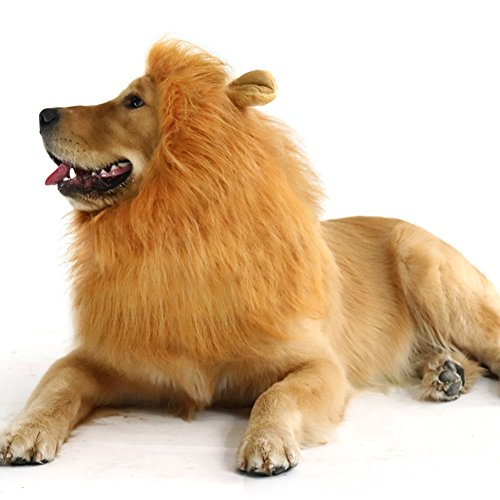 Ridgeback Lion Costume (CPPSLEE Halloween Lion Mane Wig Costume - Make Your Dog Lion King - Adjustable Washable Comfortable Fancy Lion Hair Dog Clothes Dress for Halloween (B-Brown With Ear))