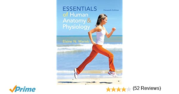 Amazon.com: Essentials of Human Anatomy & Physiology Plus ...