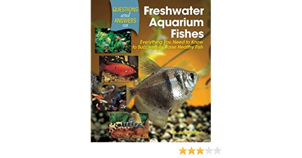 Questions And Answers On Freshwater Aquarium Fishes Everything You