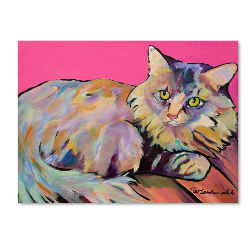 Trademark Fine Art Catatonic Canvas Wall Art by Pat Saunders, 35 by 47-Inch