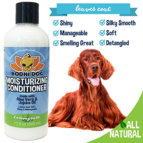 NEW Natural Moisturizing Pet Conditioner | Conditioning for Dogs, Cats and more | Soothing Aloe Vera & Jojoba Oil | Professional Grade Treatment - Made in the USA - 1 Bottle 17oz (503ml) (Lemongrass) by Bodhi Dog (Image #2)