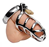 Master Series Chastity Penis Cage