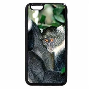 iPhone 6S Plus Case, iPhone 6 Plus Case, waiting out loud :D