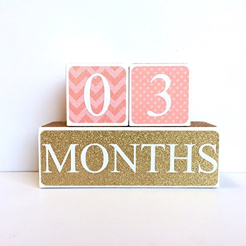 Coral and Gold Baby Age Blocks, Milestone Blocks, Photo Prop, Countdown Blocks