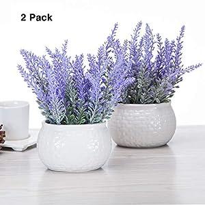 chuangxindaye Artificial Mini Potted Flowers Plant Lavender for Home Decor Party Wedding Garden Office Patio Decoration (Ceramics 2set) 39