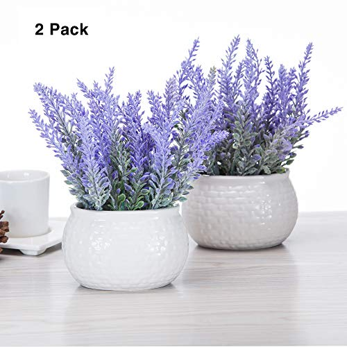 chuangxindaye Artificial Mini Potted Flowers Plant Lavender for Home Decor Party Wedding Garden Office Patio Decoration (Ceramics 2set) (Decoration Office For Flowers)