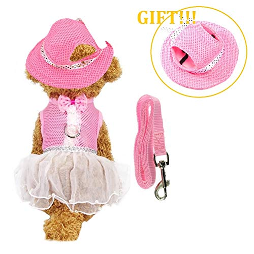 CheeseandU Dog Cat Spring Summer Mesh Vest Harness with Pet Summer Hat Set Pet Cute Walking Harness with Bowtie and White Lace Short Skirt Pearls Decor Match Leash for Small Dog Cat Rabbit, Pink