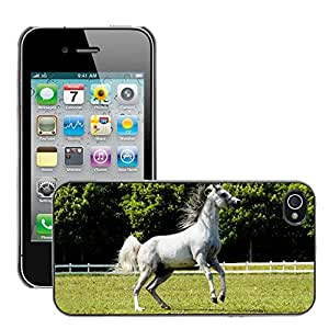 Hot Style Cell Phone PC Hard Case Cover // M00046297 animals arabian horse horses // Apple iPhone 4 4S