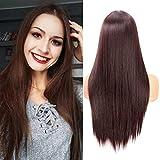 Fani 22 Inch Long Straight Dark Brown Wigs for