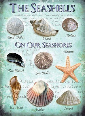 ART/ARTWORK - Licensed Collectibles, Vintage, Antique And Original Designs - SEASIDE INSPIRED DREAMS THEMED HOME / OFFICE DECOR [354210234] -