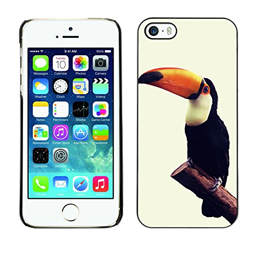 Premio Sottile Slim Cassa Custodia Case Cover Shell // F00012400 oiseau // Apple iPhone 5 5S 5G
