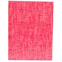 Pinnacle Burnes of Boston 200-Picture Photo Album, 2-Up, Fashion Red Linen