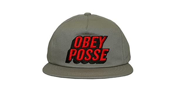 Obey Posted Snapback gris claro: Amazon.es: Ropa y accesorios