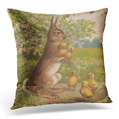 - Emvency Throw Pillow Cover Floral Antique Cute Vintage Easter Bunny Painting Green Old Decorative Pillow Case Home Decor Square 20 x 20 Inch Pillowcase
