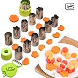 Vegetable Cutters Shapes Set 12pcs, Mini Cookie Cutters, Fruit Shape Cutters for Kids