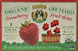 Annie's Strawberry Fruit Bites, 5 Pouches, 0.6 oz Each (Pack of 12)