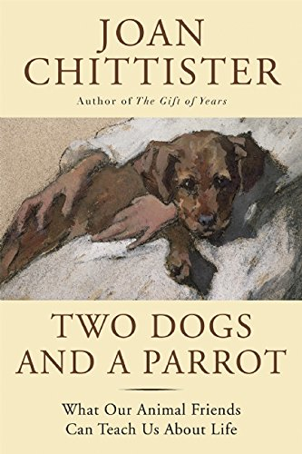 Two Dogs and a Parrot: What Our Animal Friends Can Teach Us About Life by BlueBridge