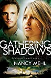 Gathering Shadows (Finding Sanctuary)