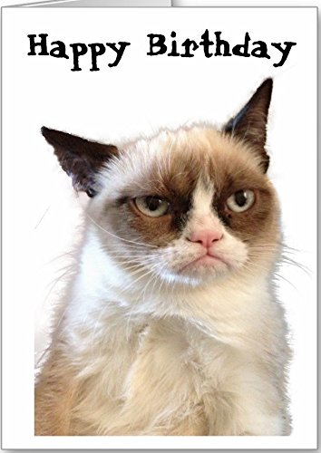 Grumpy Cat 3 Edible Icing Image birthday Party Cake Topper