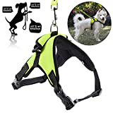 Dog Leash Harness Adjustable & Durable Leash Set & Heavy Duty Denim Dog Leash Collar for Small, Medium and Large Dog, Breathable Puppy Vest Harness, Perfect for Daily Training Walking Running (Small)