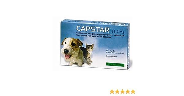 CAPSTAR para perro y gato 6 comprimidos [2 formatos]: Amazon.es: Productos para mascotas