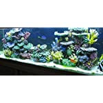 Instant Reef DM058 Artificial Coral Inserts Decor, Fake Coral Reef Decorations for Colorful Freshwater Fish Aquariums, Marine and Saltwater Fish Tanks 9