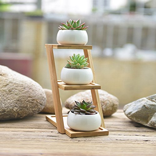 Flower Pots with Flower Stand ,Y&M(TM) Succulent Planters,Set of 3 Mini White Ceramic Flower Pots indoor for Succulent,Cactus,Decorative Flower - Bamboo Flower Stand