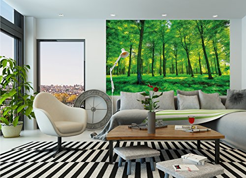 GREAT ART Wallpaper Trees Forest – Nature Wall Photo Decoration Natural Landscape Poster Summer Relax Sun Plants Flora Mural (82.7x55 Inch) by Great Art (Image #8)
