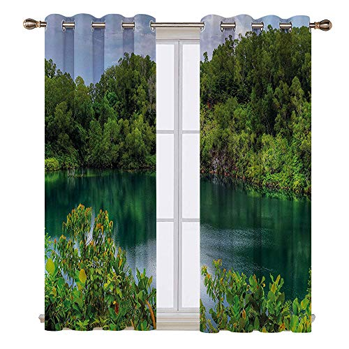SATVSHOP Thermal Insulating Blackout Curtain - 72W x 45L Inch-Patterned Drape for Glass Door.for t Pulau Ubin Singapore Lagoon Tropical Climate ainfor t Fr hn s Growth Lush Green Light ()