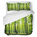 SanChic Duvet Cover Set Tree Sunlight in The Green Forest Spring Time Woods Lush Decorative Bedding Set with Pillow Sham Twin Size