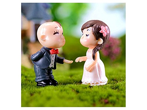 Yiyuer Couples Appropriés Micro Terrariums Ornement Paysage Jardin Féerique Miniature Dollhouse Décorations De Fête De Mariage Robe Complète (blanc + Bleu)